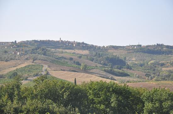 Podere San Bartolo: Just a beautiful view