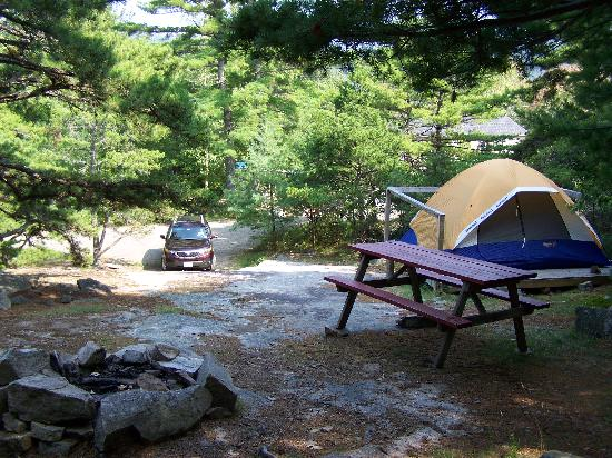 Somes Sound View Campground: Site 23 from top