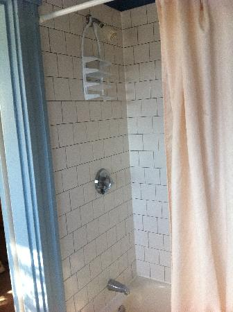 Gifford House Inn: Shower Tub Combo