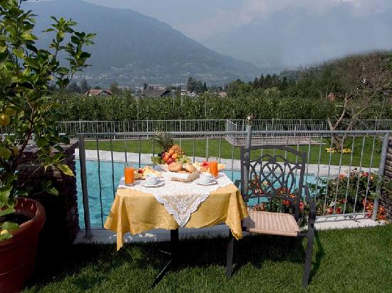 sch ner kleiner garten picture of pension verdorfer merano tripadvisor. Black Bedroom Furniture Sets. Home Design Ideas