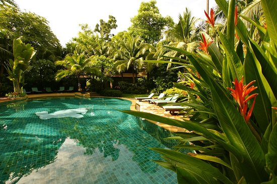 Lovely Adult Pool with tropical foliage