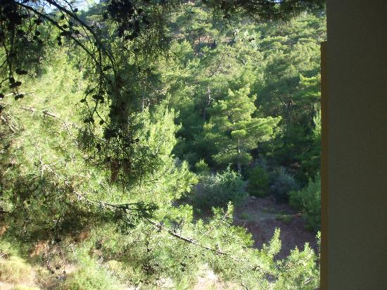 Armutalan, Turkey: view from our balcony