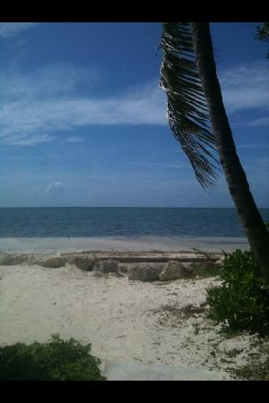 Royal Plum Club: Marathon Key, FL beach August 2011