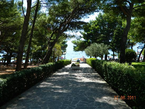 Biokovka: Walk to the beach