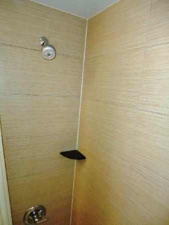 Comfort Inn Bellerose: Shower