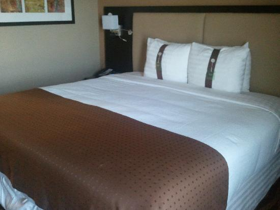 Holiday Inn Hotel-Houston Westchase : Bed in Bedroom