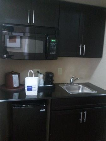 Holiday Inn Hotel-Houston Westchase: Fridge/Microwave