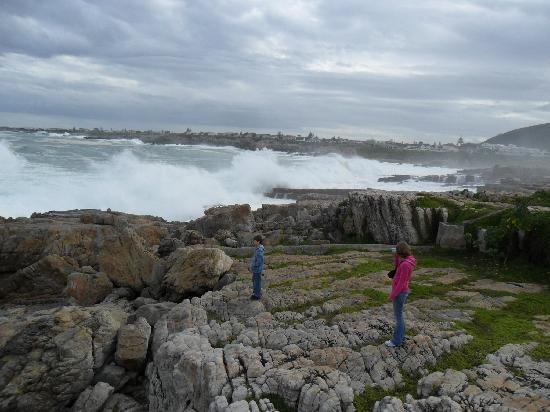Marine Square: Awesome waves at Hermanus.
