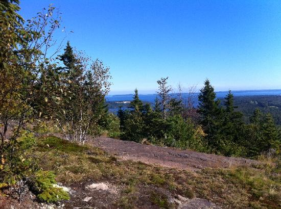 Rossmount Inn: View from top of Chamcook - Labor Day Weekend