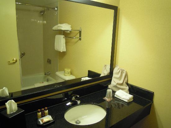 Sheraton Charleston Airport Hotel: Bathroom in King room bath, not spacious but of ample size
