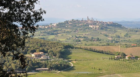 Fattoria Voltrona