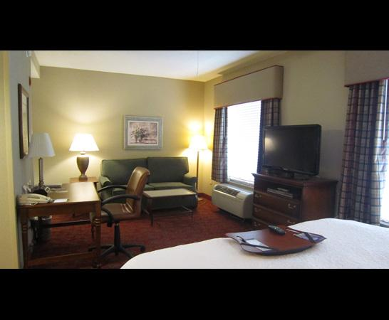 Hampton Inn & Suites Montgomery-East Chase: room view 2