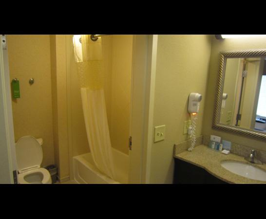 Hampton Inn & Suites Montgomery-East Chase: bathroom view 2