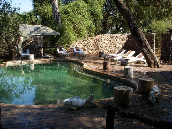 Pafuri Camp: Pool area.
