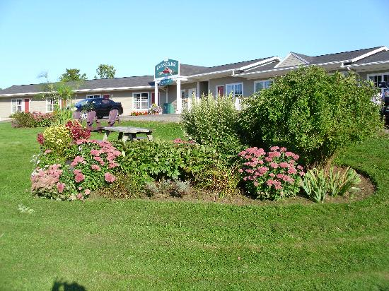 Evangeline Inn & Motel Inc.: Some of their flowers.