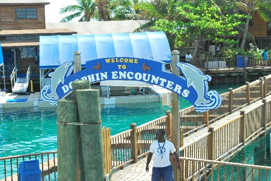 ... Providence Island: Dolphin Encounters entrance at Blue Lagoon Island