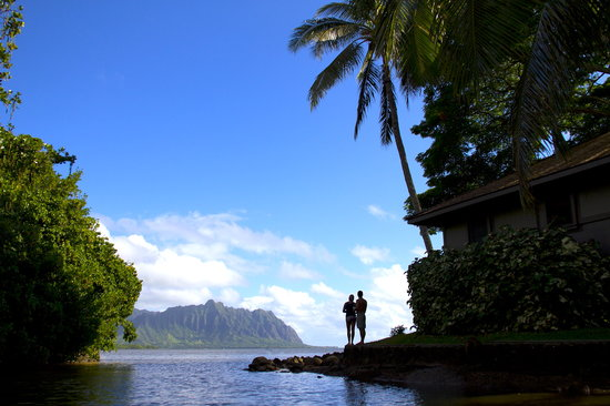 Paradise Bay Resort Hawaii: Love in Paradise