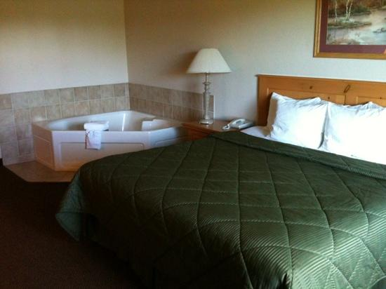 Comfort Inn &amp; Suites: King room