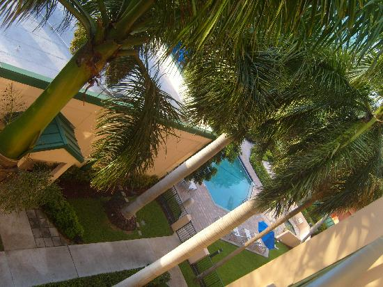 Courtyard by Marriott Fort Lauderdale East: pool view from our balcony