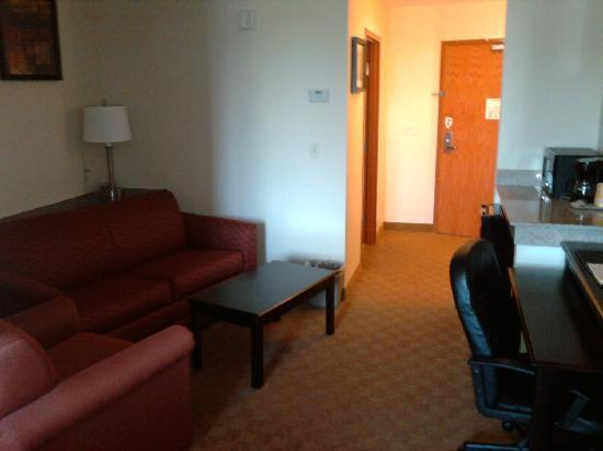 Comfort Suites near Raymond James Stadium: Living Area