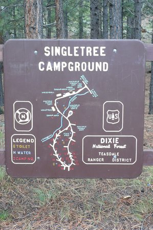 Photo of Single Tree Campground Teasdale