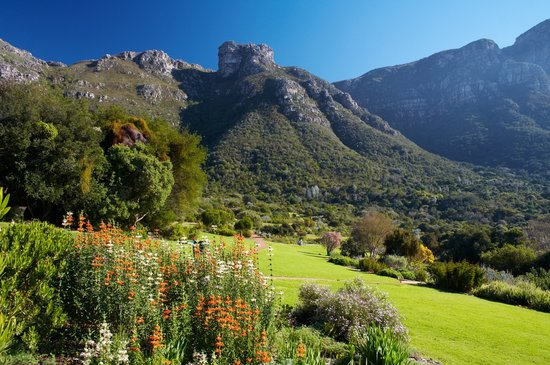 Centrala Kapstaden, Sydafrika: Kirstenbosch National Botanical Garden