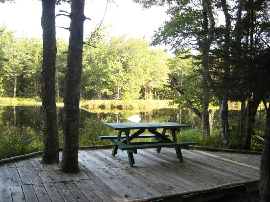 Mersey River Chalets and Nature Retreat: Mersey River Chalets Boardwalk Picnic Table