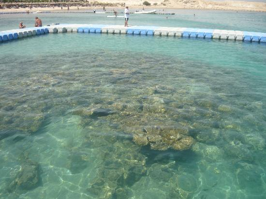 Sharm Hotel: 