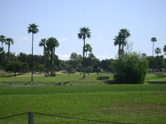 Millennium Scottsdale Resort & Villas: Vista del Campo