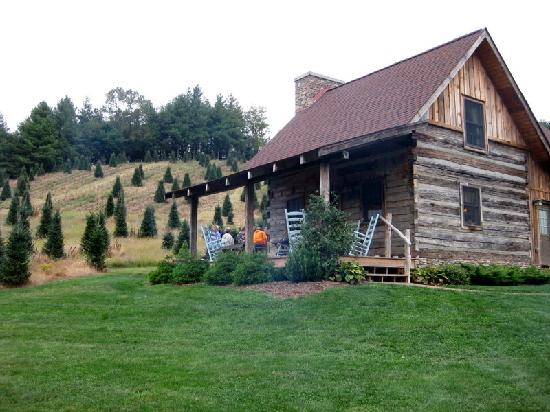 Our Cozy Cabin Picture Of Boyd Mountain Log Cabins