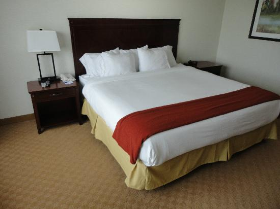 Holiday Inn Express Hotel & Suites Brockville: chambre