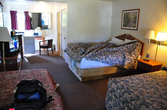 Shady Oaks Motel: Standard room