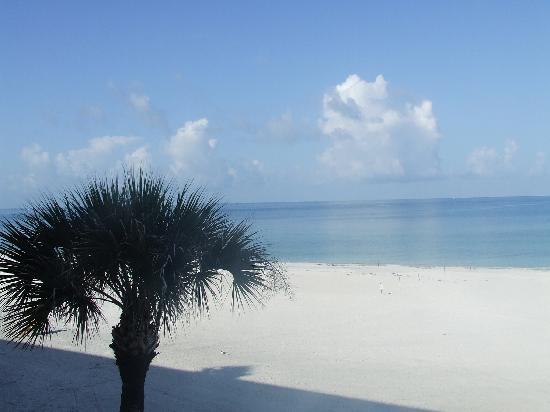 Sandcastle Resort at Lido Beach: View from my room