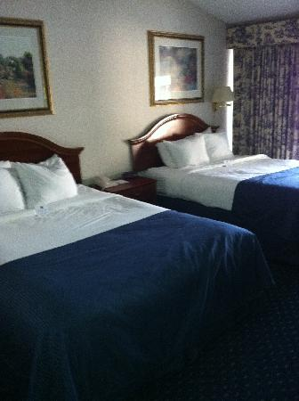 Clarion Hotel & Conference Center: our 2nd floor room