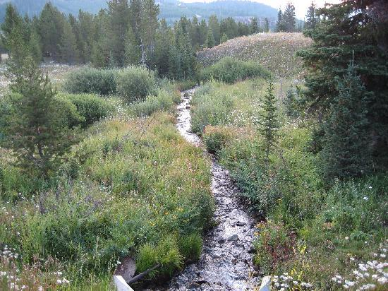 The Lodge at Big Sky: stream along the road behind hotel