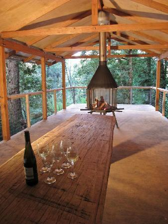Tarkine Trails - Tarkine Rainforest Retreat