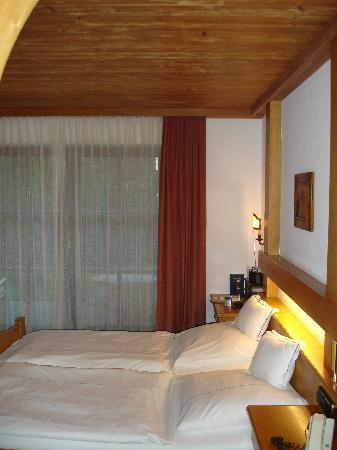 Photo of Hotel Alpina Hagnau