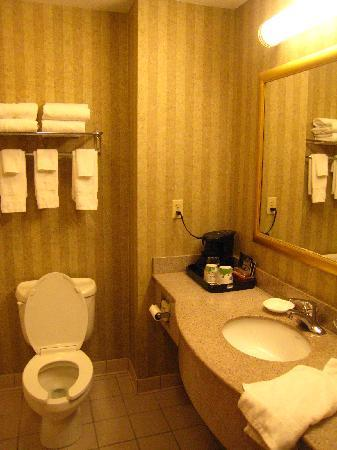 Hampton Inn & Suites Petoskey: lots of counter space