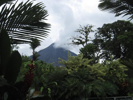 Tabacon Grand Spa Thermal Resort: View of Arenal
