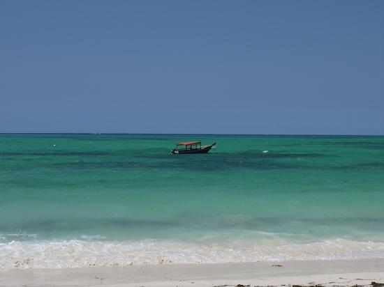 Pongwe Beach Hotel: The beach and turquoise blue waters