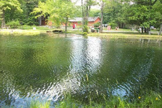 Deerpark / New York City NW KOA: Fishing pond and volleyball court