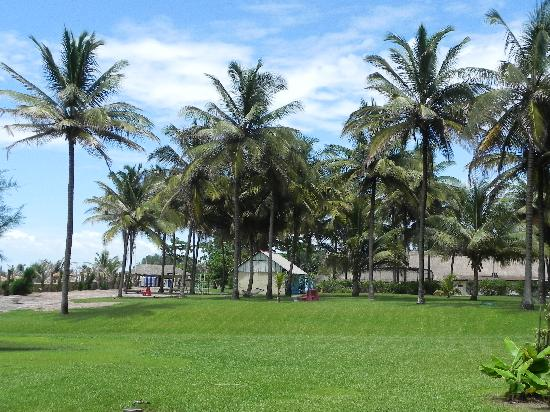 Kairaba Beach Hotel: Grounds