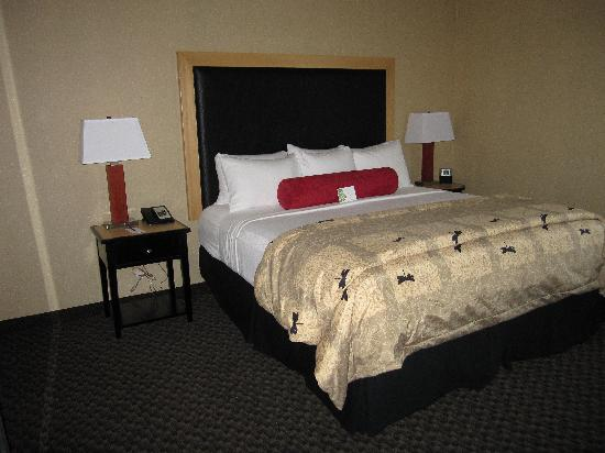 Cambria Suites Oklahoma City: King bed in the suite