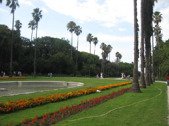 Algiers, Algeria: Jardin d&#39;ssais - Alger - Algrie - 2011 (5 de 6)