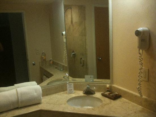 Fiesta Inn: Bathroom