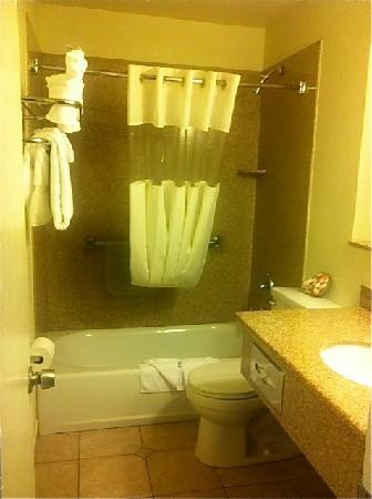 BEST WESTERN Tradewinds: Our super clean bathroom.