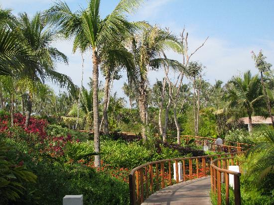 Mayan Palace Nuevo Vallarta: pathway