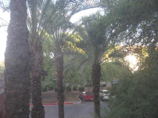 Red Roof Inn Phoenix Airport: View from our room.