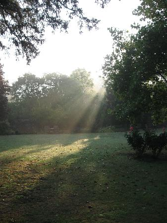 College Farm B &amp; B, Ipswich, Suffolk, UK: Early Morning Sun (view from room)