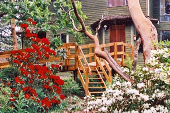 Arbutus Hill Bed and Breakfast: House and garden